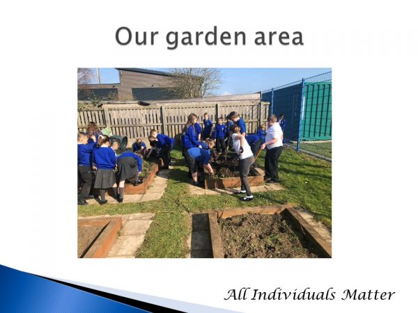 our garden area new March 2021